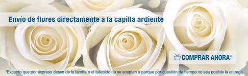 Funerarias y tanatorios de asturias for Jardin noega tanatorio gijon esquelas